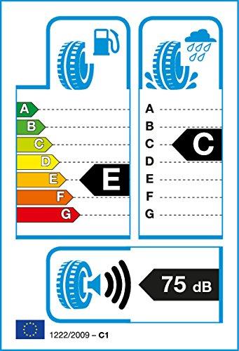 ROADSTONE 225/70 R16 103T EUROVIS HP01