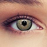 "Designlenses, Dos lentillas de color gris para un aspecto muy natural para los ojos oscuros de tres meses sin dioprtías/corregir + gratis caso de lente'Dimension Grey"""