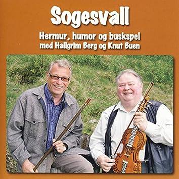 Sogesvall: Hermur, Humor Og Buskspel
