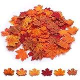 🍁Perfette Decorazioni Autunnali Naturali: 600 pezzi di foglie d'acero sono assortiti in 6 colori mescolati insieme, ogni colore ha 100 foglie. Facile da integrare con l'ambiente naturale all'aperto, squisito e unico, perfetto per creare un sentimento...