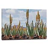 HUAYIJIE Plant Gallery - Lienzo decorativo para pared, 61 x 40,6 cm, diseño de plantas de aloe vera, hojas medicinales, remedio de Fuerteventura, Islas Canarias