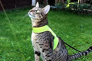Mynwood Cat Jacket/Harness High Viz Adult Cat - Escape Proof