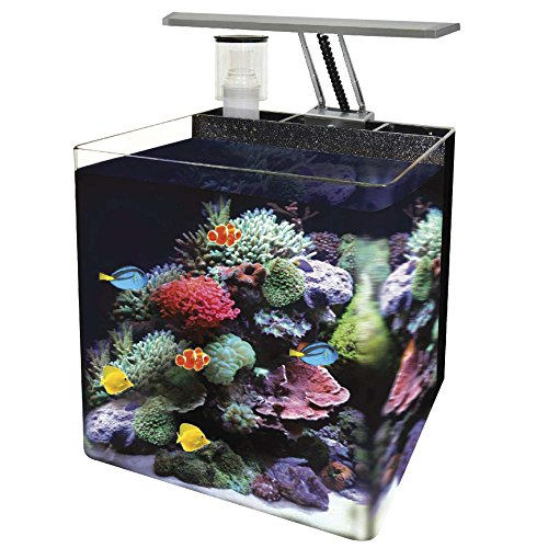 Ocean Free AT561A Nano Aquarium, Schwarz