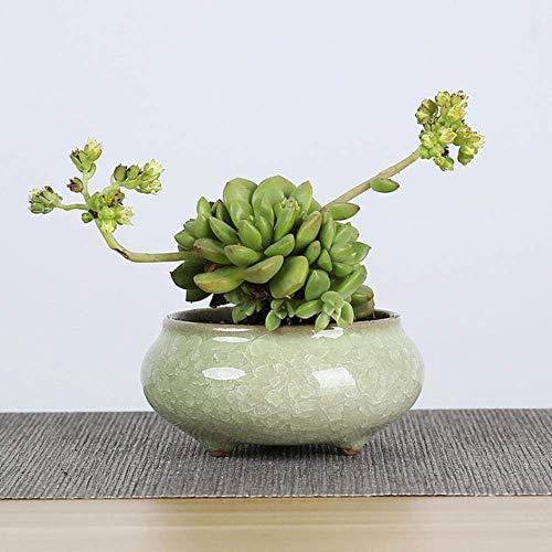 ZTMN 1 pièce Pots de Fleurs en céramique de Fissure de Glace pour Les Plantes juteuses Petit Pot de bonsaï décoration de Maison et de Jardin Mini Pots de Plantes succulentes, Vert Clair