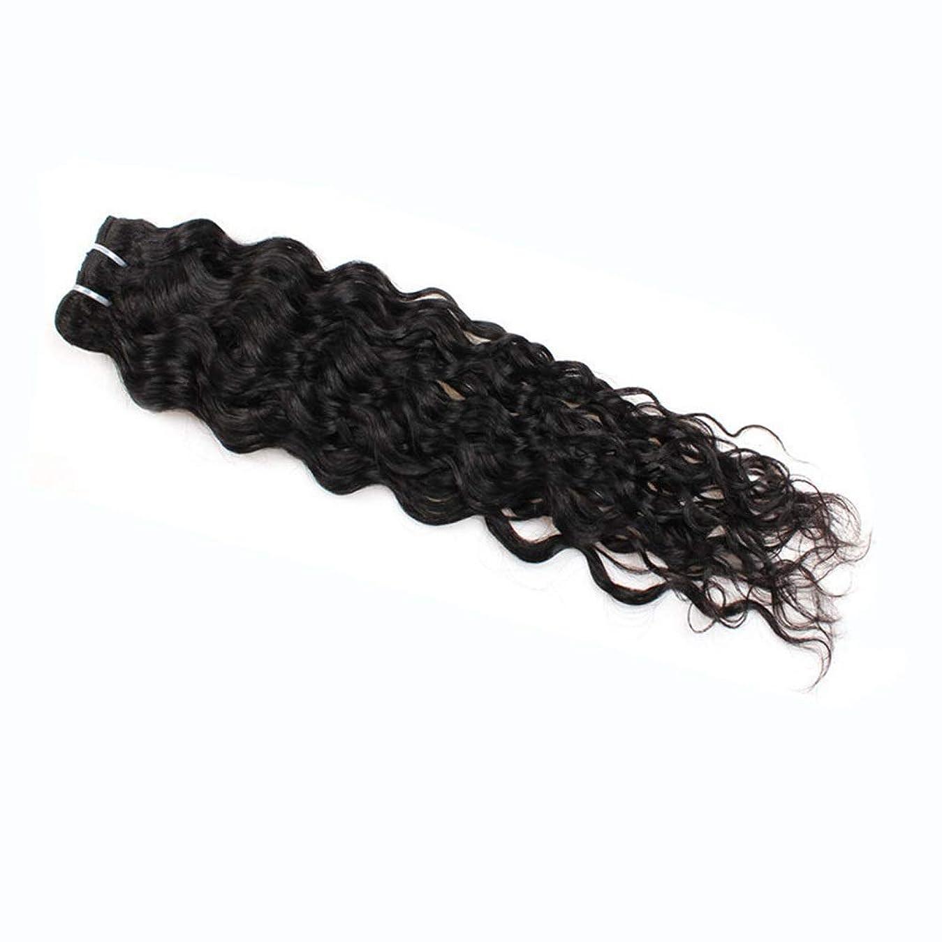 データベース電気技師上回るYESONEEP 7a未処理のバージンブラジル髪織り100%ブラジル水波人間の毛髪延長100グラム/バンドルナチュラルカラーパックの1複合ヘアレースかつらロールプレイングウィッグロングとショート女性自然 (色 : 黒, サイズ : 16 inch)