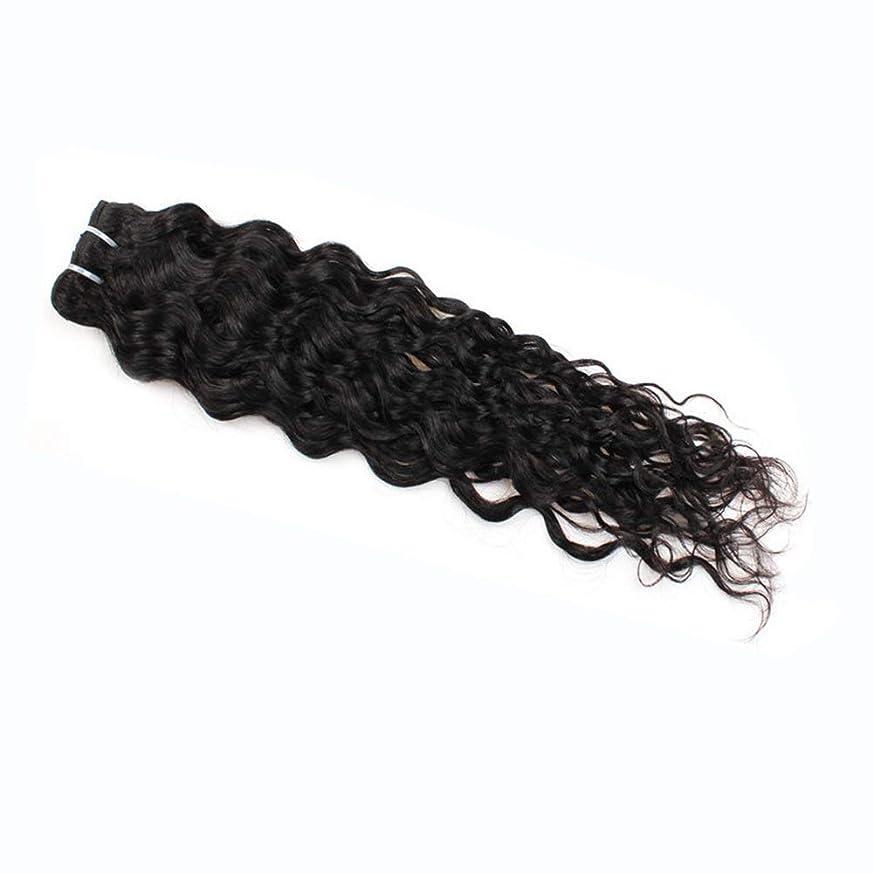 命令的お酢テスピアンBOBIDYEE 7a未処理のバージンブラジル髪織り100%ブラジル水波人間の毛髪延長100グラム/バンドルナチュラルカラーパックの1複合ヘアレースかつらロールプレイングウィッグロングとショート女性自然 (色 : 黒, サイズ : 10 inch)