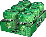 Trident Fresh Bottle Hierbabuena- Chicles sin Azúcar con Sabor a Hierbabuena - 6 Botes de 82,6 g
