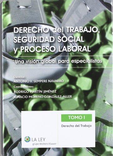 Derecho del trabajo, Seguridad Social y proceso laboral: Una visión global para especialistas