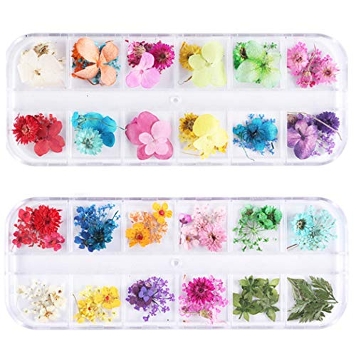 GOTONE 108pcs Dried Flowers 3D Nail Art Stickers Decoration DIY Preserved Real Flower Stickers Tips Manicure Decor Mixed Accessories,80pcs Starry+40pcs Five Flower with Leaves (2 Boxes)