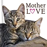 Mother Love (Cats)