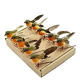 Yolococa - 10 piezas de plumas artificiales para árbol de Navidad, diseño de pájaro
