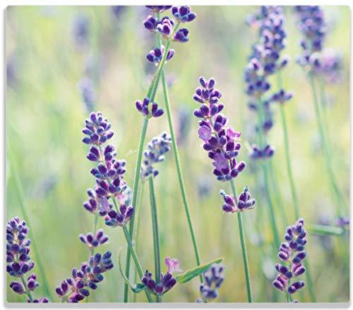 Wallario Herdabdeckplatte/Spritzschutz aus Glas, 1-teilig, 60x52cm, für Ceran- und Induktionsherde, Lila Blumenfreude - Violette Pflanzen auf der Wiese