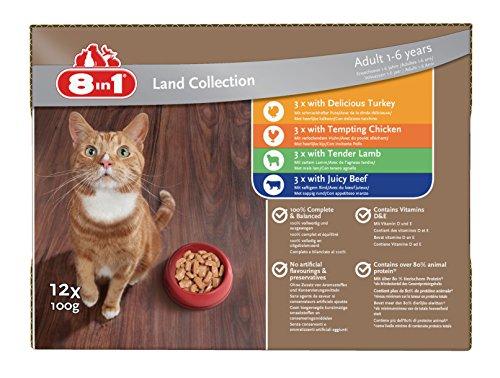 8in1 Katze Nassfutter Land Collection ( für erwachsene Katzen ab 1 Jahr, verschiedene Sorten Fleisch in Sauce), 12 x 100 g Frischebeutel, 1er Pack (1 x 1.2 kg)