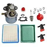 HURI Carburetor Tune Up Kit for Coleman Powermate PM0401853 PM0401852 1850 1500 Watt...