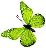 Magnetische Schmetterlinge mit Clip grün 6 Stück, 8 cm, Tierattrappe, Frühlingsdekoration Naturgetreu