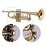 Immagine 1 btuty bb ottone tromba standard