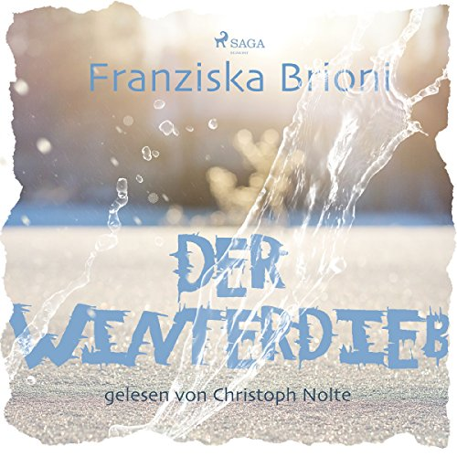 Der Winterdieb audiobook cover art