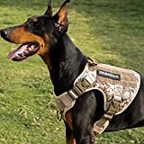 Kindacoool Tactical Dog Harness for Large Medium Dogs, Military Dog Harness with 4X Locking Buckle, Molle & Loop Panels, Adjustable No-Pull Dog Vest for Training Hunting Walking (L, Desert Camo)