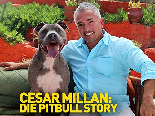 Cesar Millan: Die Pit Bull Story [dt./OV]