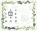 EARVO Baby Monthly Milestone Blanket Green Leaves 40x40 Inches Super Soft Comfy Polyester Fabric Photography Props Blanket Unique Gift for Growing Infants & Toddlers EAGE096