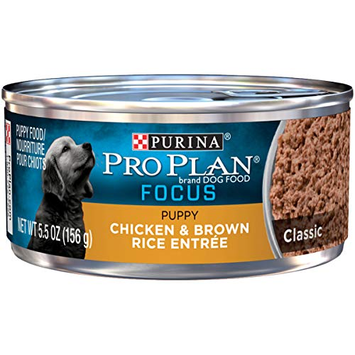 Purina Pro Plan Pate Wet Puppy Food