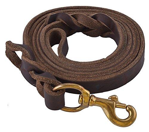 EXPAWLORER Double Handle Dog Leash
