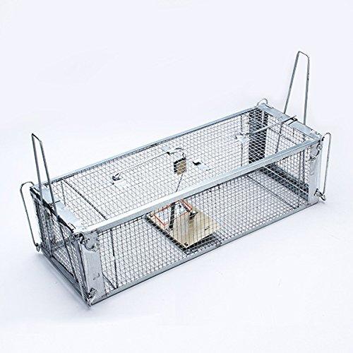 Bluelover Contrôle De Lutte Antiparasitaire De Cage De Receveur De Piège À Rats De Souris De Sensibilité Élevée De Deux Portes