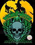 Wicked Witch: Adult Coloring Boo...