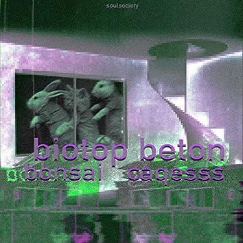 Biotop Beton