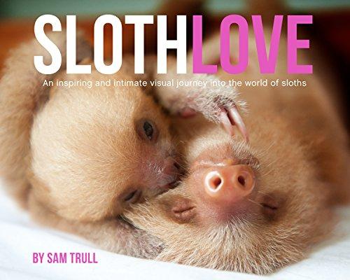 Sloth Love Photo Book
