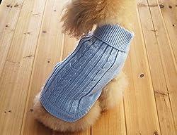 Yorkie-Kleidung - Die beste Kleidung in Yorkshire Terrier