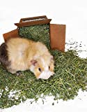 High Desert Alfalfa Hay - Dried Natural Alfalfa Hay for Rabbits, Guinea Pigs, Chinchillas, and Ferrets - Protein and Fiber Rich Food for Small Animals - Healthy Pet Food