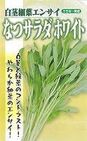 フタバ種苗卸部【うちなー育成】なつサラダ ホワイト (葉菜)種・小袋(20ml/約280粒入)