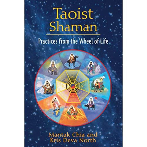 Taoist Shaman: Practices from the Wheel of Life (English Edition)