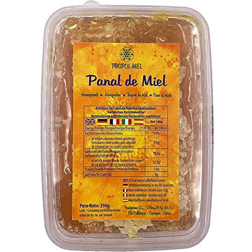 Panal de miel x 375 g - Miel panal de Mil Flores con aroma floral, cosechada en UE. Miel en panal, mejora las defensas, propiedades antivirales.