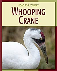 Image: Whooping Crane (21st Century Skills Library: Road to Recovery) | Kindle Edition | by Susan H. Gray (Author). Publisher: Cherry Lake Publishing (January 12, 2014)