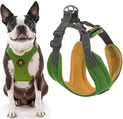 Gooby Dog Harness - Green, Large - Convertible Sport Step-in Neoprene Small Dog Harness with Adjustable Neck Fastener - Perfect on The Go Harness for Small Dogs or Cat Harness