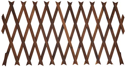 タカショー(Takasho)木製伸縮トレリス 焼磨 30×180vm TKR-30