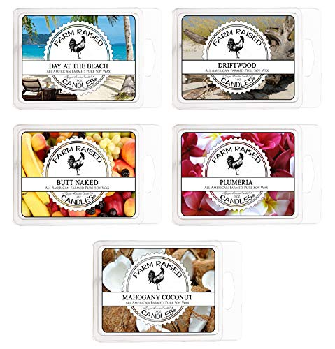 Sunny Beach Day Variety Mix 5 Pack Scented Soy Wax Warmer Cube Melts 15 Oz 100% All Natural American Farm Raised Soy Wax. Essential Oils Mahogany Coconut, Plumeria, Drift Wood. Butt Naked.