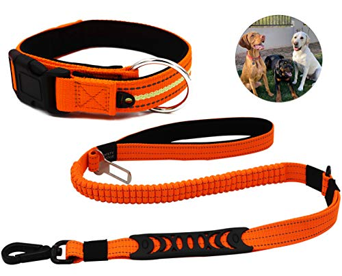 Reflective Dog Collar Leashes Set, Heavy Duty Bungee Dog Leash with Car Seat Belt, with Extra Loop for Dog Poop Bag, Collar with Extra Loop for Dog Tags for Large Medium Dog Training Walking