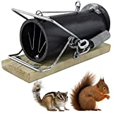 Red Squirrel Traps - Ouell Traps - Ground Squirrel Traps - Chipmunk Trap
