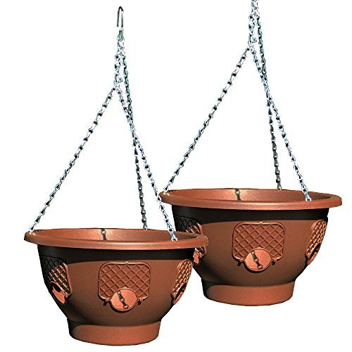 Ultimate Hanging Baskets - Strawberry, Tomato, Flower, and Herb...