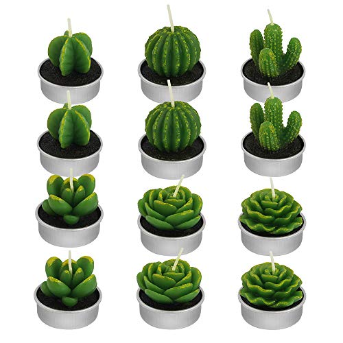 DECARETA 12 Piezas Velas Cactus Realistas Sin Humo,Velas en Forma de Planta Hechas a Mano Delicadas Plantas Decorativas para Fiestas, Decoración del Hogar, Cumpleaños, Bodas