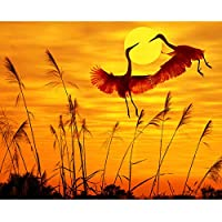 油絵 数字キットによる絵画 塗り絵 大人 手塗り Diy絵 デジタル油絵サンセットクレーン-Diyフレーム 40* 50 Cm