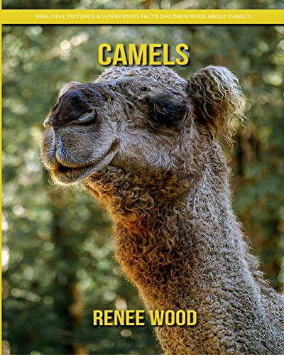 Camels: Beautiful Pictures & Interesting Facts Children Book About Camels