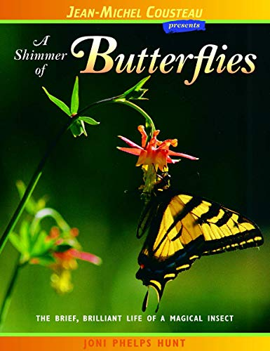 Shimmer of Butterflies: The Brief, Brilliant Life of a Magical Insect (Jean-Michel Cousteau Presents)