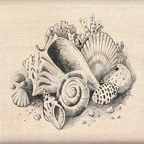 Inkadinkado Beach and Shell Wood Stamp for Card Marking and Scrapbooking, 3'' W x 2.25'' L