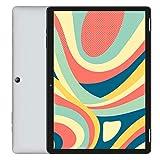 HAOQIN H10タブレット10.1インチAndroid 9.0 WiFi - 2GB/32GB 6000mAh 800x1280 IPS液晶Bluetooth4.0日本語仕様書付き/グレー