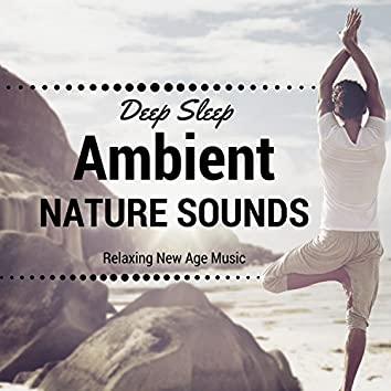 Ambient Nature Sounds - Relaxing New Age Music, Zen Music for Deep Sleep