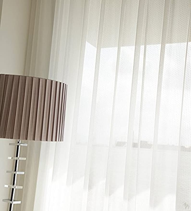 ふさわしいビタミンコモランマ東リ やわらかい印象のストライプ カーテン1.5倍ヒダ KSA60493 幅:250cm ×丈:150cm (2枚組)オーダーカーテン